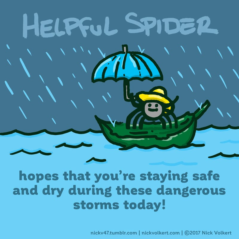 Helpful Spider is riding a leaf on water during a storm.