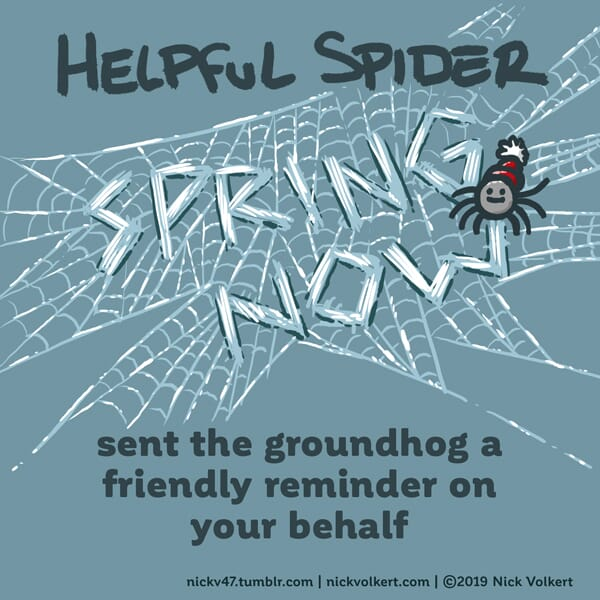 Helpful Spider weaves a web that says 'spring now'.