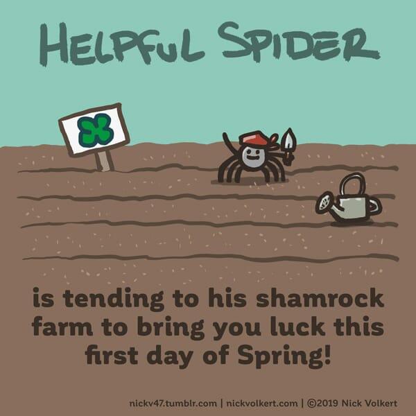 Helpful Spider is tending a shamrock garden.