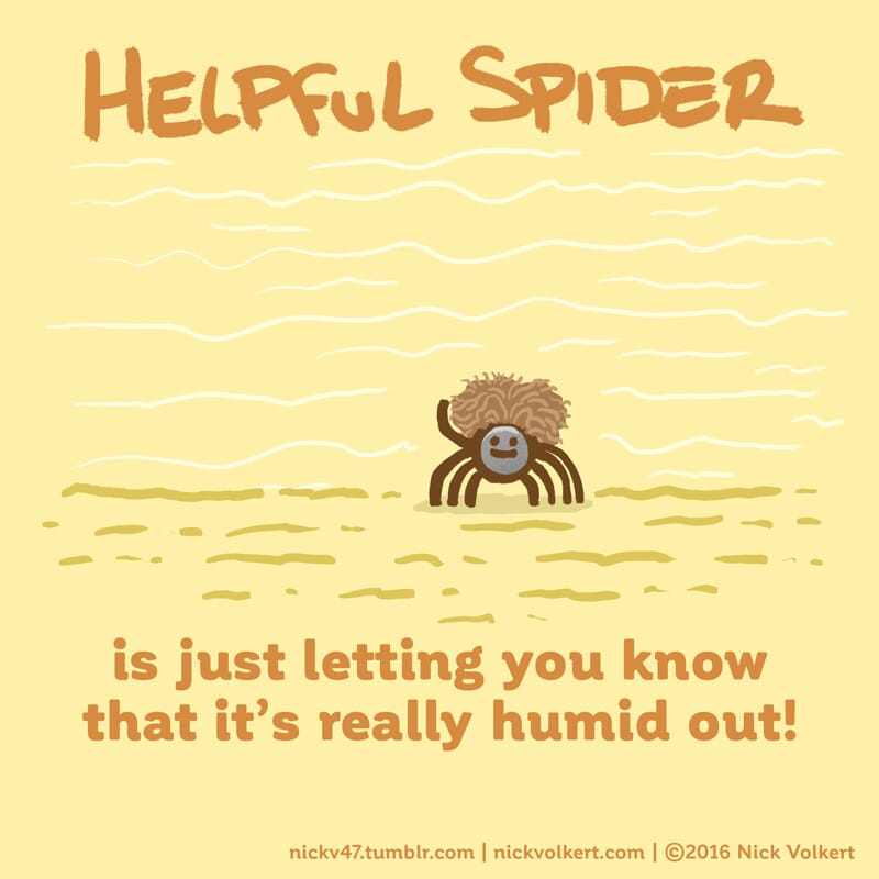Helpful Spider's hair is super poofy because of the humidity!