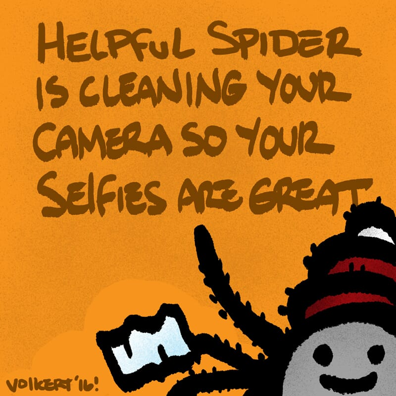 Helpful Spider is cleaning a photo camera.