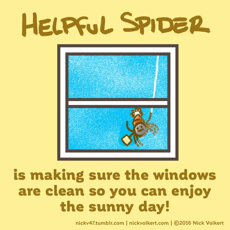 Helpful Spider is cleaning a dirty window on a sunny day.