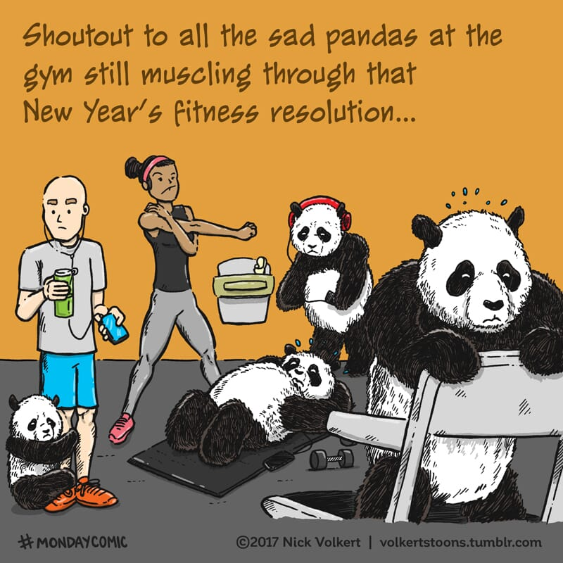 Sad pandas cling to healthy gym goers.