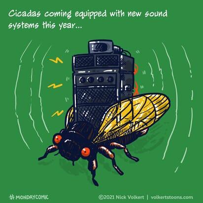A cicada blasting a full sound system.