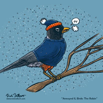 An annoyed robin perched on a branch while is snows around him, wearing a stocking cap and crewneck