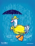 An annoyed duck dressed in a raincoat and umbrellas avoiding the rain.