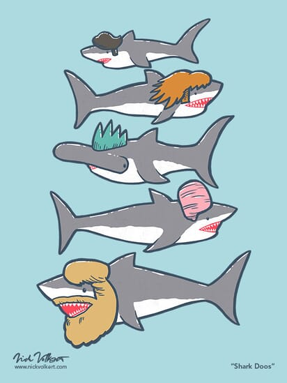 A collection of sharks with various haircuts.